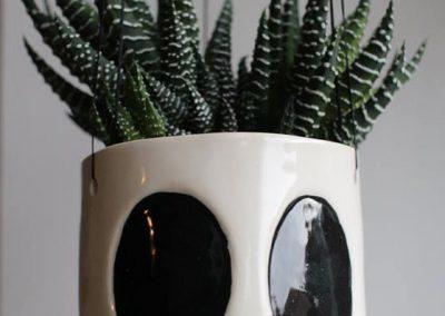 Hængeskjuler i kranieform med plante