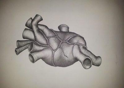 Tegning af et hjerte